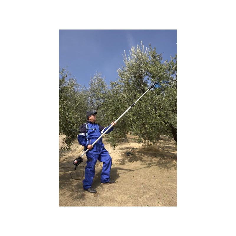 recolte olives materiel