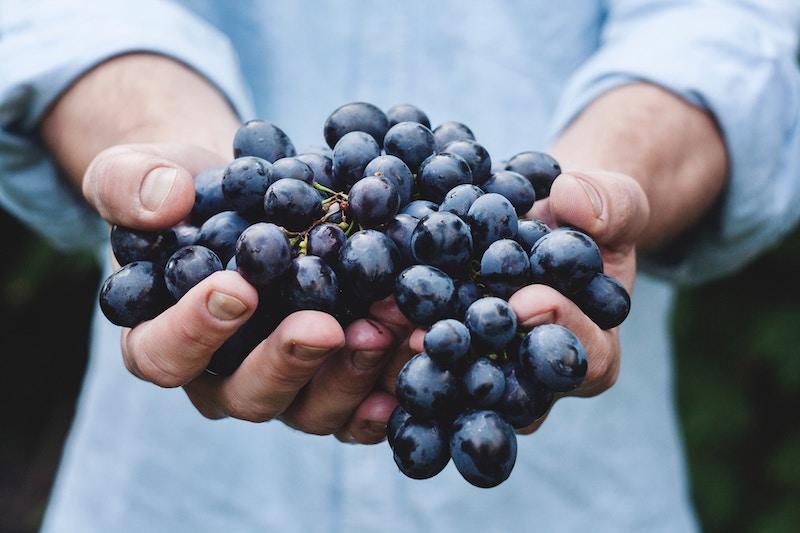 que cuisiner avec des grappes de raisins